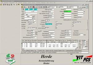 herde_1